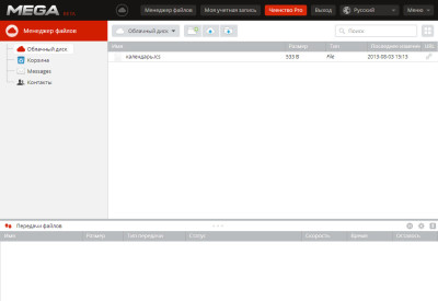 Mega.co.nz предлагает 50 Гб места, но доступ только через веб