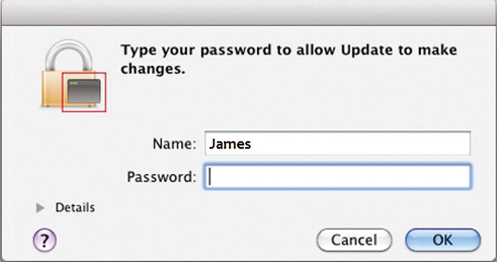 Рис. 3. FlashFake «просит» пароль