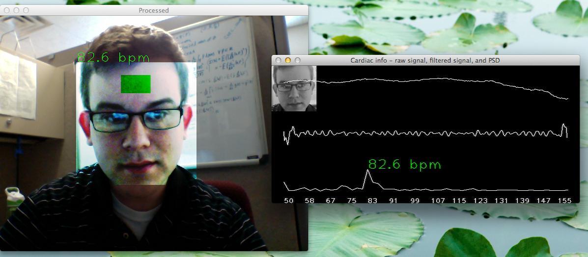 Рис. 2. Результат работы программы webcam-pulse-detector