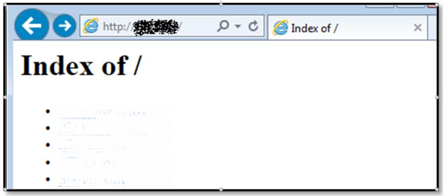Рис. 3. Листинг содержимого директории с веб-контентом