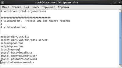 Конфигурационный файл PowerDNS