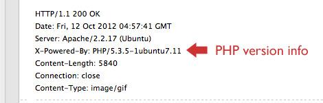 Раскрытие версии PHP