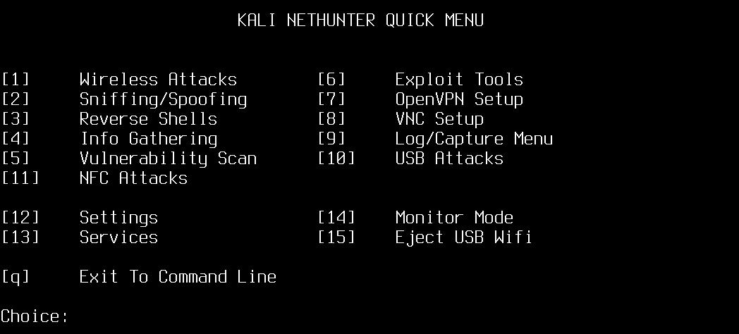 Текстовое меню Kali