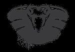 Логотип уязвимости Venom