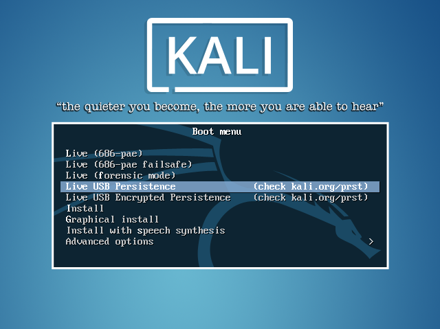Варианты загрузки Kali Linux