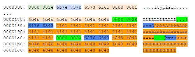 Выделенные блоки `avcC` и `hvcC`