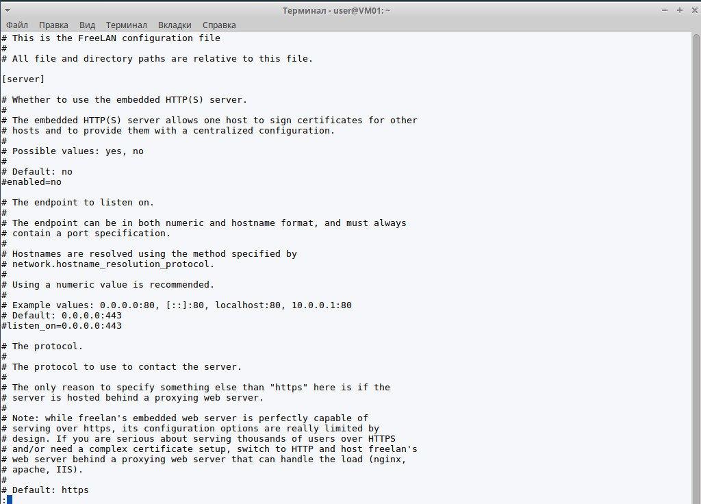 Конфигурационный файл FreeLAN