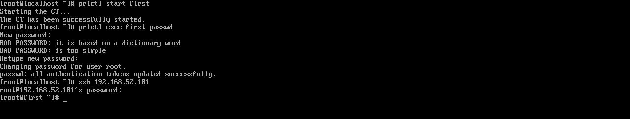 Рис. 3. Запуск виртуального сервера, изменение пароля root и подключение по SSH