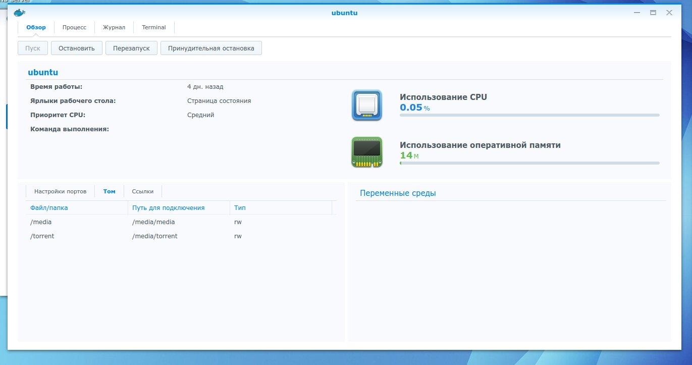 Docker-контейнер с указанием подключения томов