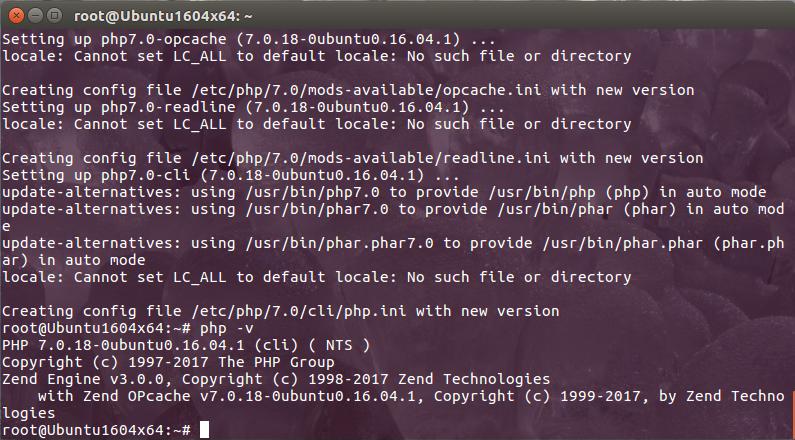 Рис. 17. Версия PHP
