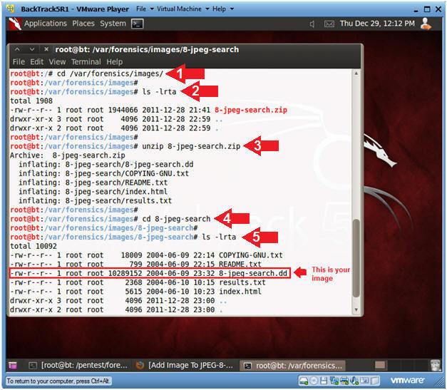 Распаковка скачанного архива JPEG Search Test #1