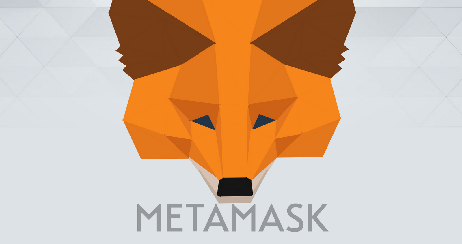 Из Chrome Web Store случайно удалили настоящее расширение кошелька Metamask вместо фейкового