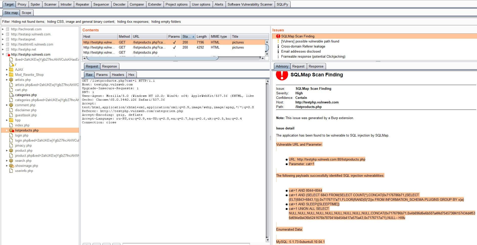Найденная уязвимость типа SQL-инъекция в панели Issues