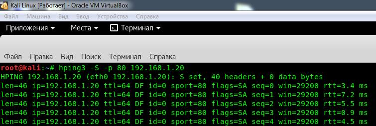 Флуд сервера SYN-пакетами