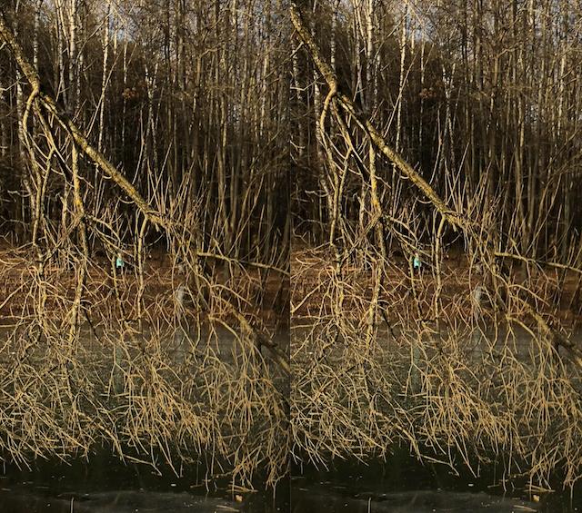 Слева — вариант со сжатием, справа — без. Отличить не так-то просто
