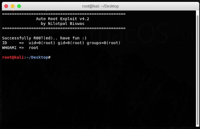 Результат работы Auto-Root-Exploit — получение root-прав на систему