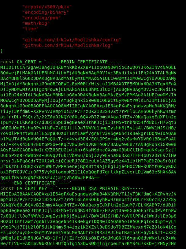 Файл autocert.go после замены сертификата