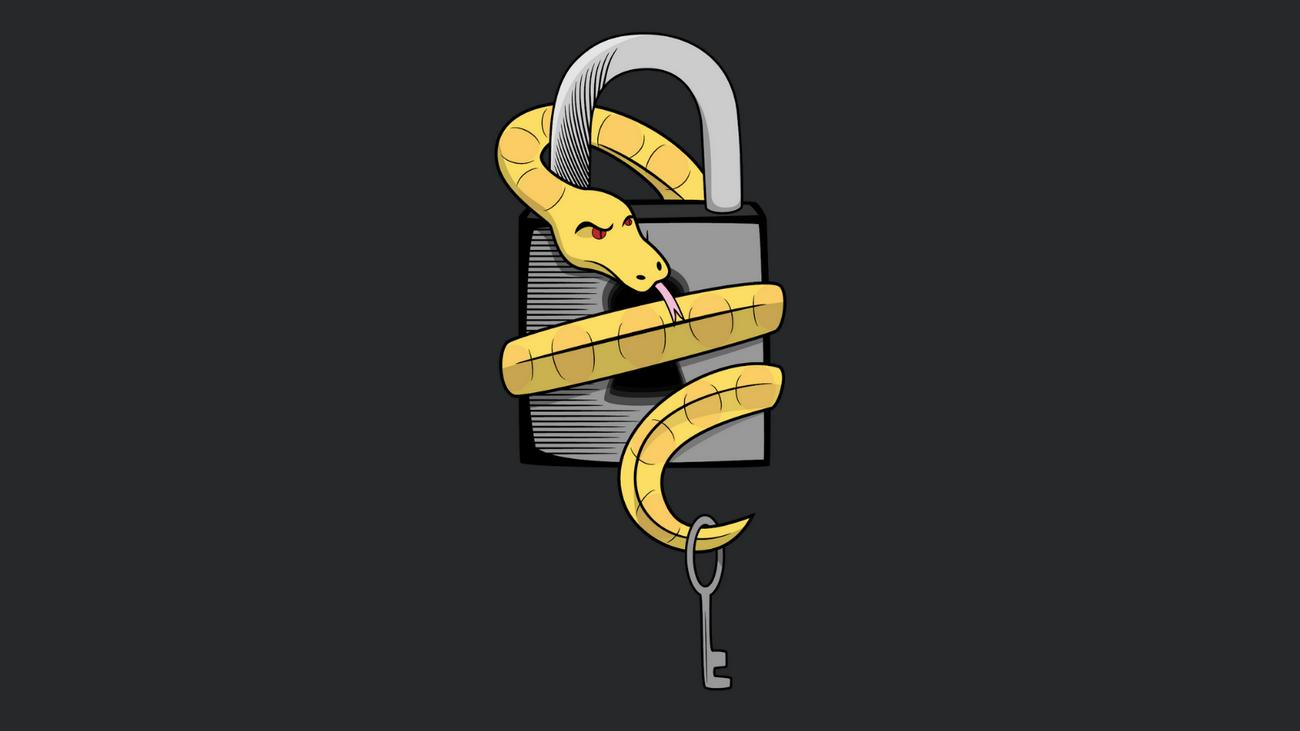 Французские власти выпустили бесплатный дешифровщик для малвари PyLocky