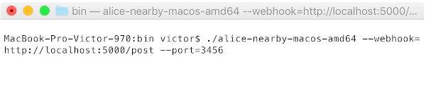 Запуск на MacOS
