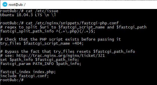Дефолтный конфиг fastcgi.conf для nginx в Ubuntu 18.04
