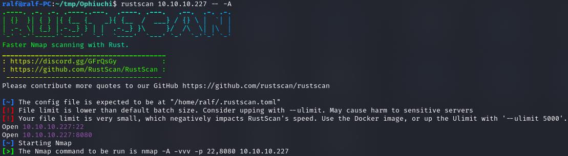 Обнаруженные с помощью RustScan открытые порты