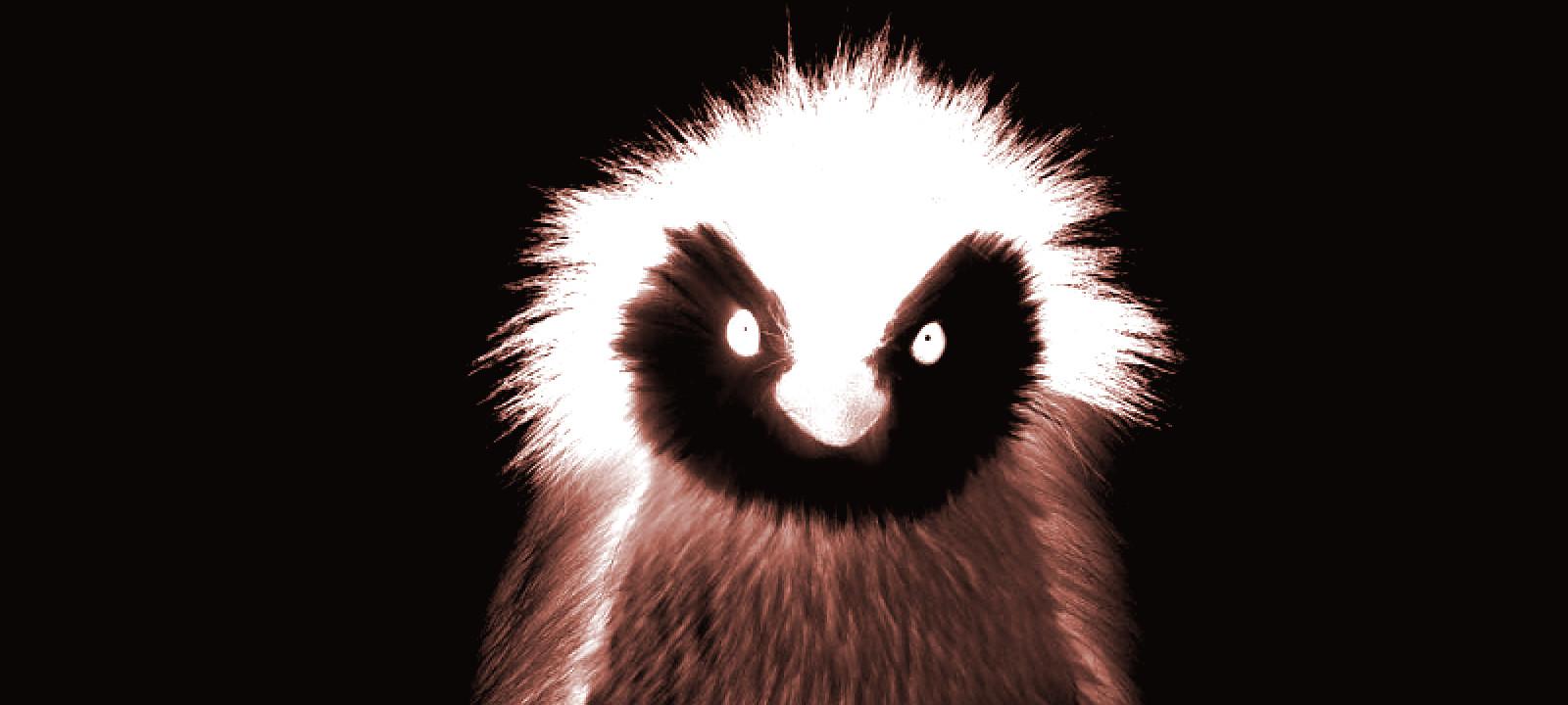 Распуши пингвина! Разбираем способы фаззинга ядра Linux